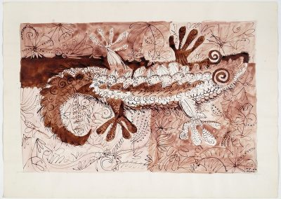 Salamander in Hvar (1963)